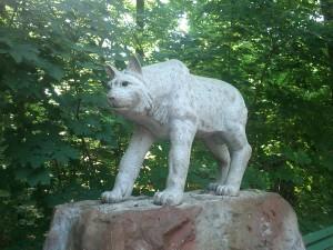 Majestatyczny pomnik rysia w łódzkim Zoo...
