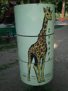 Żyrafy z łódzkim Zoo miały ostatnio pecha...